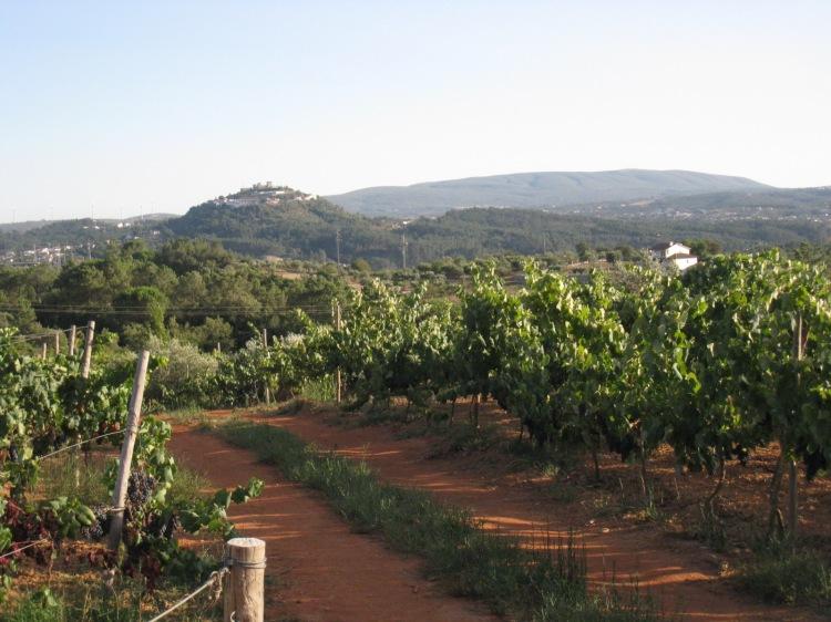 Castelo de Ourem e Serra d' Aire