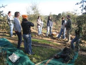 rezar no campo jan 2010 (1)